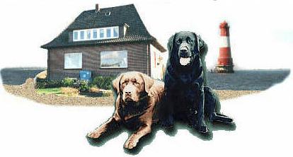 wochenende nordsee mit hund